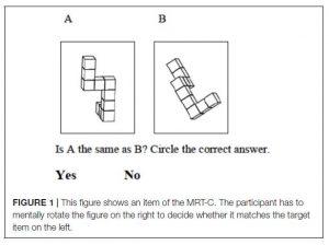 Figuur 1; voorbeeld mentale rotatietaak