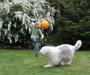 Afb Jongen met bal