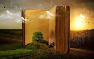 Afb boek en ver-beelden